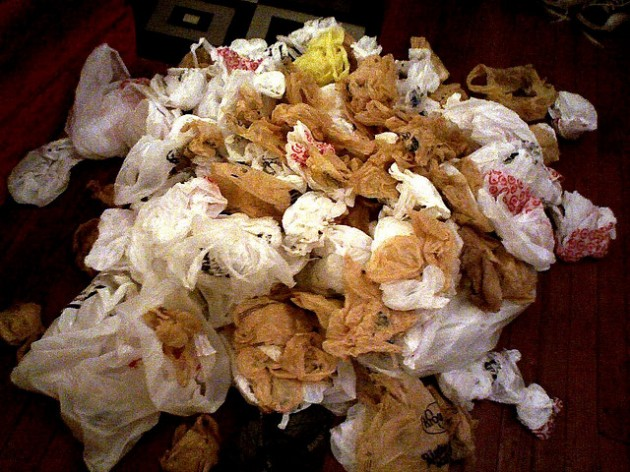 Plastic Bags - Should NJ start to ban the use of them?